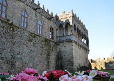 camelias_castelo_20